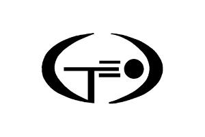 eltectrostandart